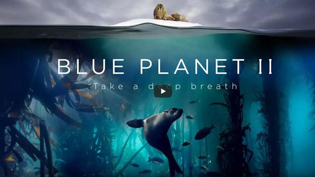 Martin Pauser - Pro Tools Operator - BluePlanet2
